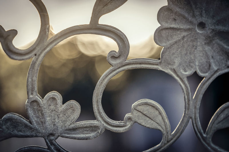 Close-up of wrought iron with floral pattern