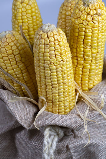 Corn after