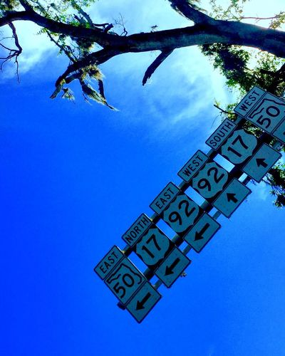 Which way do I go? Nanoisincontrol #infgraphix Nanoisincontrol Infentic Graphix Infenticgraphix Text Western Script Capital Letter Low Angle View Communication Tree No People Day Blue Clear Sky Outdoors Hanging Sky Close-up Nature