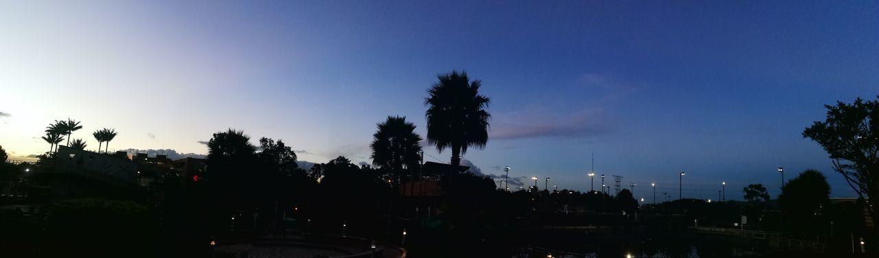 tarde noche