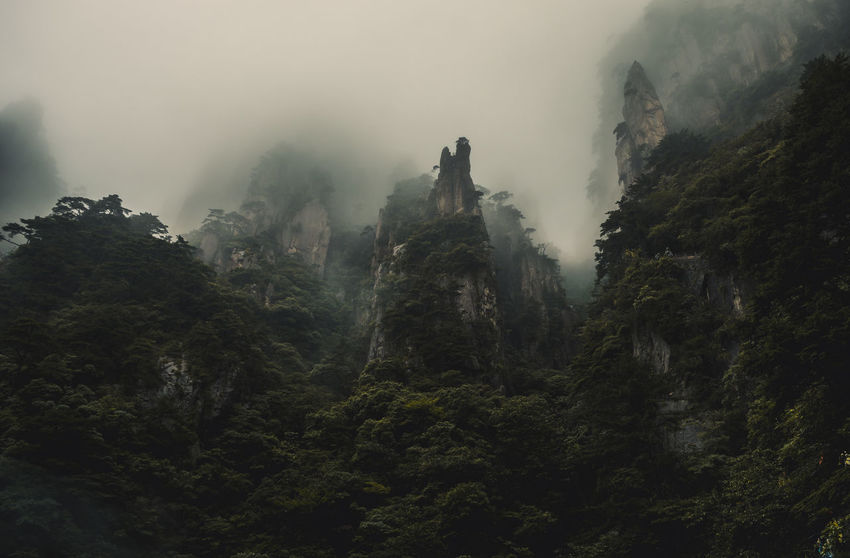 Mountain in the Clouds Mountain Clouds Cloudy Sky Huangshan Green Dark Fog Tree Morning Forest Nature No People Mountain Pine Tree Outdoors Landscape Sky Day Tree Area Beauty In Nature