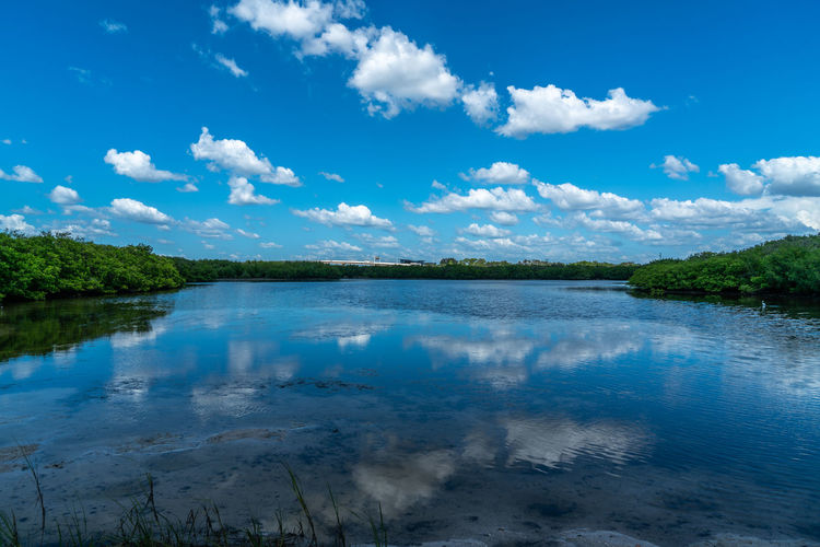 A day at Cypress Point Park in Tampa Florida. Water Sky Cloud - Sky Nature No People Outdoors Tampa Bay Tampa, Florida Beach Sand Clouds Nature Landscape Scenics Views Day Daylight Sunshine Reflections Birds Pier Grass Mangroves Blue Green
