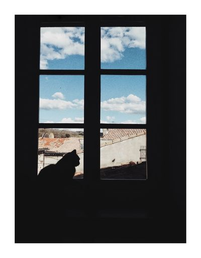 Pré méditation Window Sky Silhouette Indoors  Looking Through Window Cloud - Sky Animal Themes Pets Domestic Cat No People