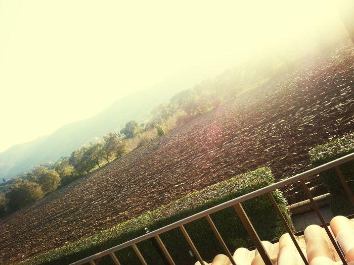 Italy Tuscany Countryside ♥