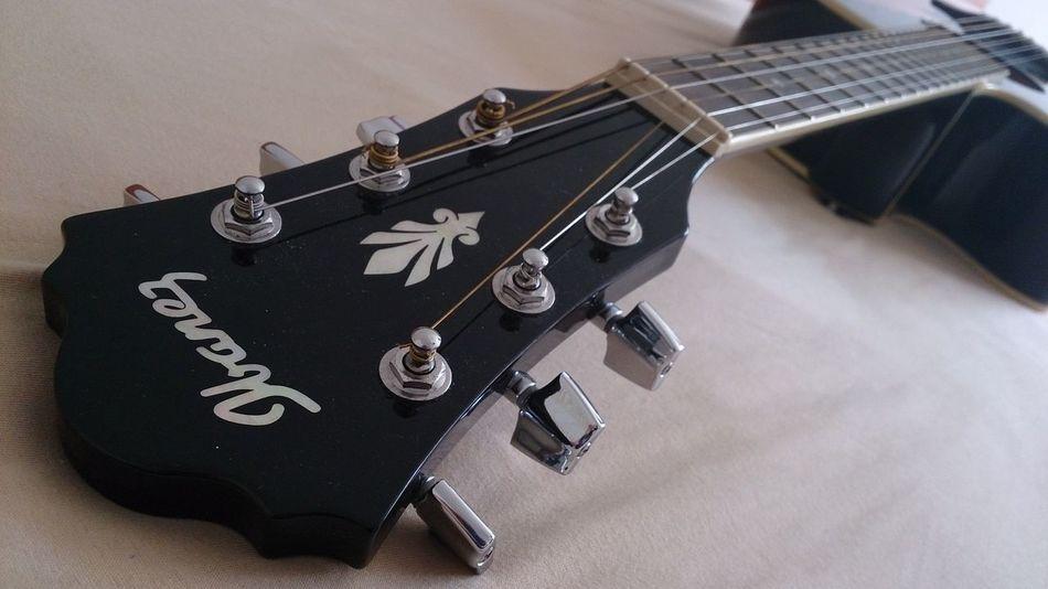 Ibanez Guitars Ibanez Guitar Black Guitar