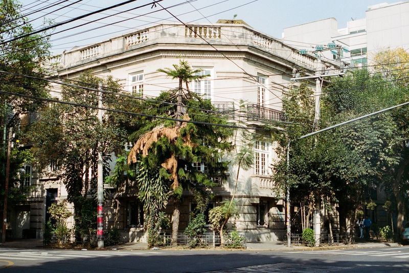 Mexico City LaCondesa Architecture Building Exterior Growth City No People Tree Old Buildings Romamexicocity Canon AE-1 Analog Filmisnotdead Filmcamera