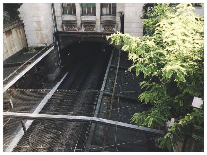 la série de Paris_le parc montsouris. Architecture Building Exterior Plant RER Metro Metro Station Arrêt Gare Stop Stopping Time Rail Plant Park Paris