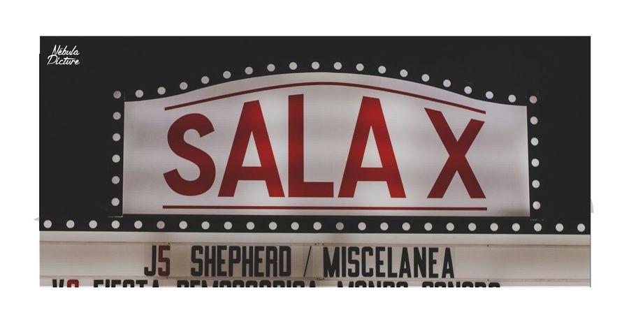 Sala X concierto Miscelanea y Shepherd Nébula Picture Sevilla Salax Miscelanea Shepherd RockPhotography Concierto