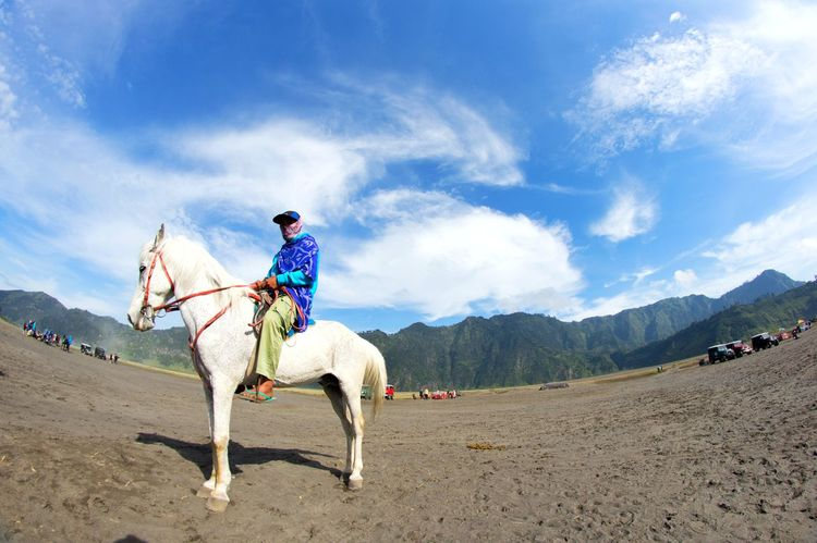 Horse One Animal Full Length Horseback Riding Riding Cloud - Sky Travel Animal Animal Themes One Person Working Animal Domestic Animals One Woman Only People Outdoors Jockey Adult Motion Adventure Cowboy Hat Background EyeEmNewHere Landscape Sand Soft Focus