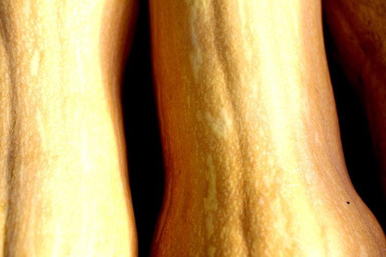 Sunlight across Squash Butternut Squash Orange Color Orange Vegetables Squash - Vegetable Sunlight Across Vegetables Vegetable
