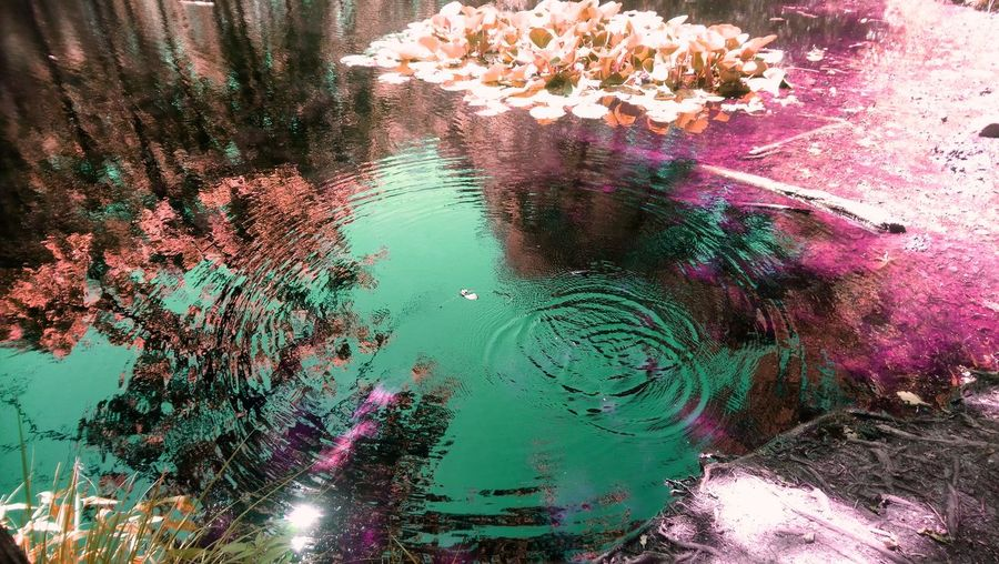 Magic Pool of Death Pool Water Multi Colored Close-up Full Frame Abstract Backgrounds