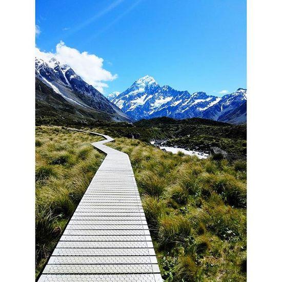 MtCook Withfriends Aoraki Newzealand Summer Travel