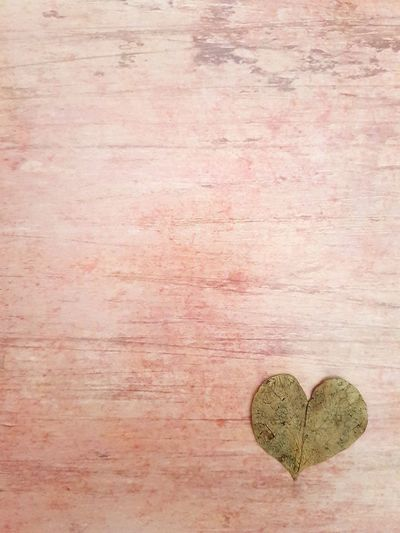No People Table Vertical Indoors  Close-up Day Wood - Material Woodheart Heart ❤ Leaves