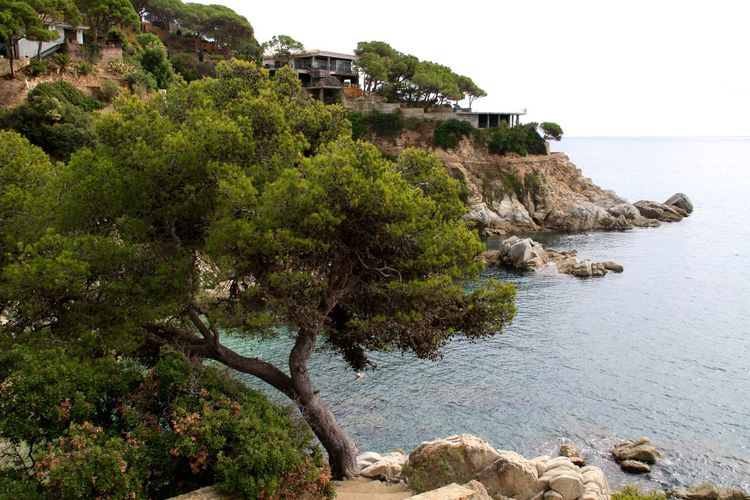 Lloret De Mar Mediterranean  Architecture Beauty In Nature Building Exterior Built Structure Cliff Lloretdemar Nature No People Rock - Object Rock Formation Scenics Sea Tranquility Tree Water