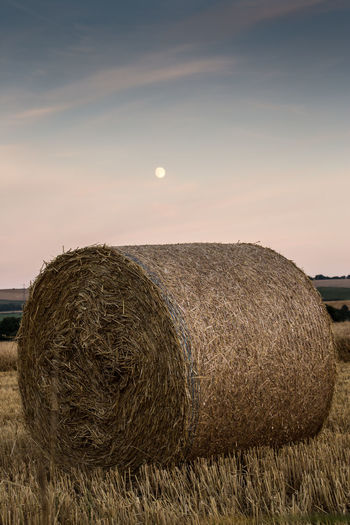 Hay Bale On Field At Dusk
