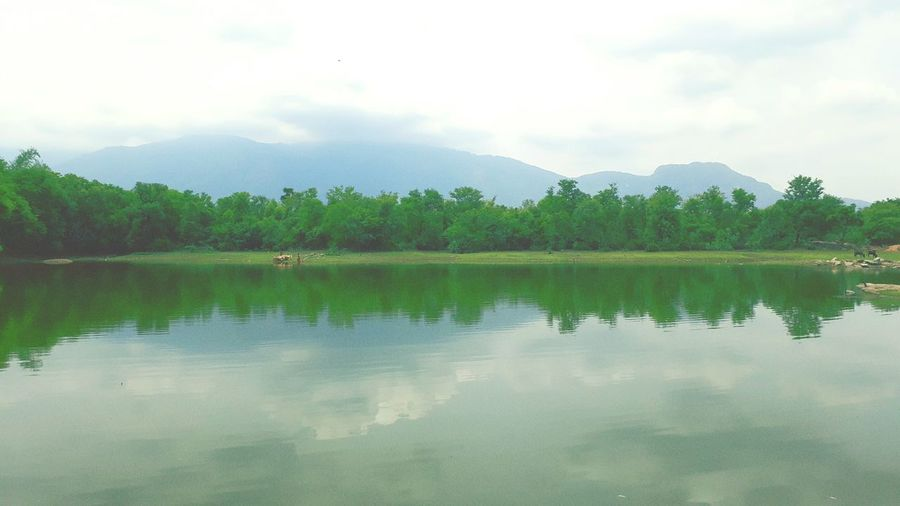 Reflection Lake Water Tree Reflecting Pool Standing Water Cloud - Sky Nature Outdoors No People Symmetry Mountain Sky Landscape Scenics Day Beauty In Nature