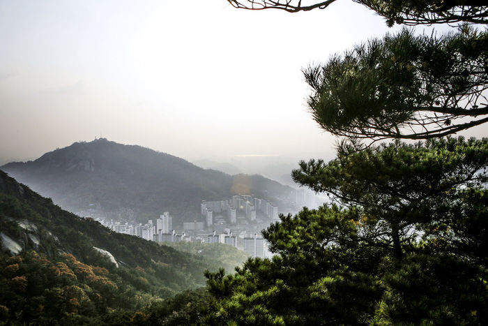 Ansan Clear Sky Exploring Geology Hill Inwang Mountain Lake Lakeshore Mountain Mountain Range Outdoors Physical Geography Reflection River Riverbank Standing Water Tree Vacation Voyage Water Waterfront