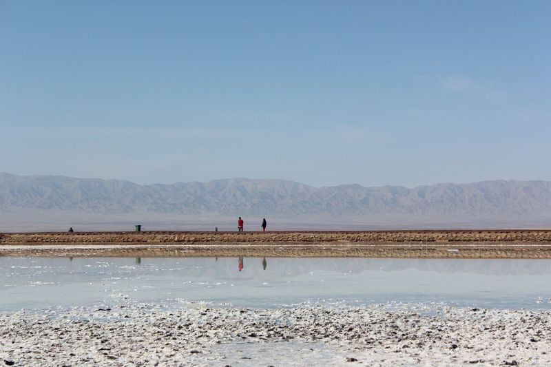 Chaka Salt - Mineral Salt Basin Water Bird Clear Sky Sea Beach Full Length Salt Flat