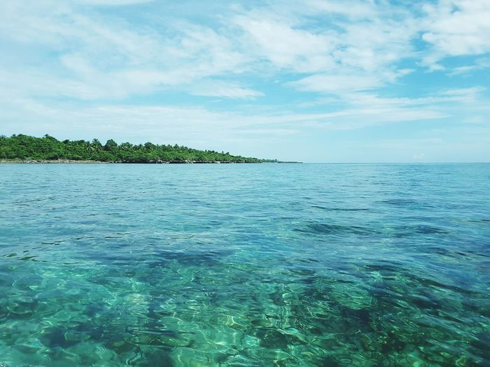 Dive spot Clear Water Beach Landscape Scenics Cloud - Sky Beauty In Nature Blue Sky Tree Nature Beautiful Reef Wakatobi Island