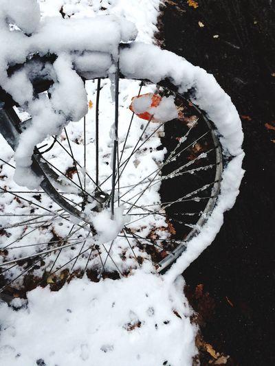 Erster Schnee Schnee Fahrrad Bike Tadaa Community