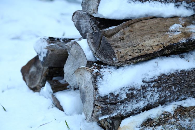 Close-up of logs in snow