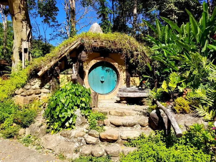 EyeEm Selects Hobbit Hobbiton Hobbit House Hobbits Hobbit Hole Bilbobaggins Lord Of The Rings Tree Sunlight Architecture Plant Built Structure Sky Green Color Ivy Archway Creeper Plant Passage