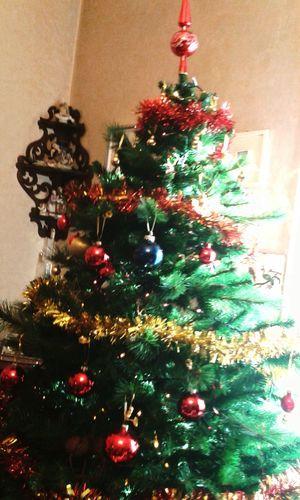 Alberi di Natale ovunque Christmas Christmas Tree Natale  Albero Di Natale Happy :) Happiness Felicità Taking Photos