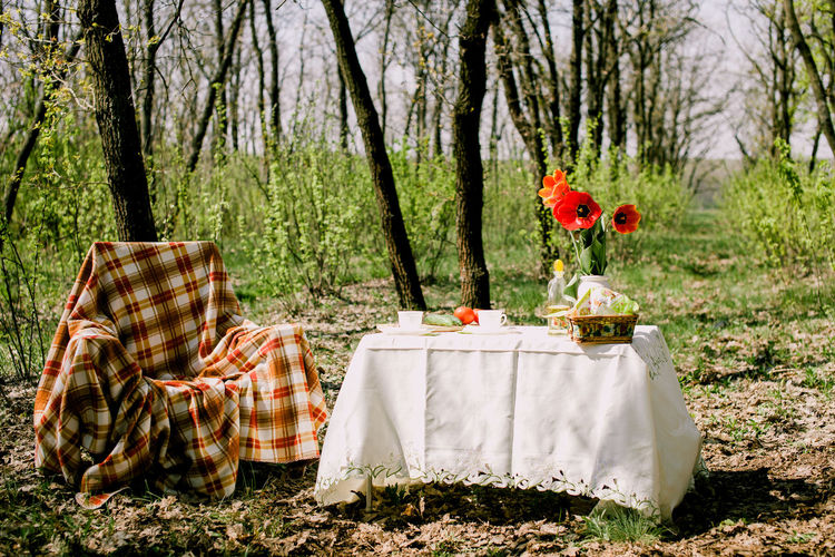 Table in forest