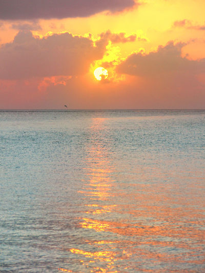Sky Sunset Beauty In Nature Scenics - Nature Water Horizon Sea Tranquility Horizon Over Water Orange Color Tranquil Scene Cloud - Sky No People Nature Sun Outdoors