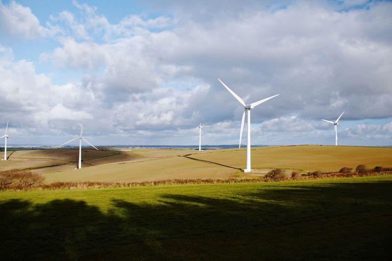 Wind farm fields. Wind Turbine Environmental Conservation Wind Power Alternative Energy Renewable Energy Fuel And Power Generation Industrial Windmill Field Sky Landscape Cloud - Sky Day Rural Scene No People Grass Outdoors Technology
