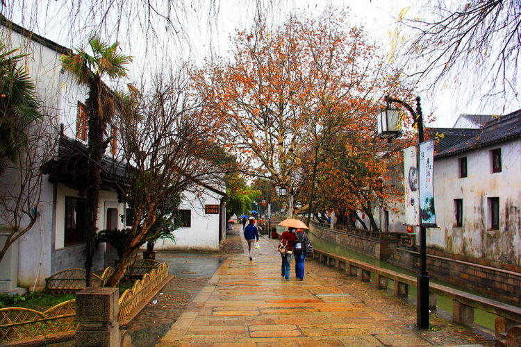 RAINY & SNOW IN SUZHOU, PINGJIANG STREET Building Historical Building OLD SUZHOU STE Rainy SPRNGTIME SUZHOU PINGJIANG ST VENICE OF CHINA Wet Spot Heritage Building Canonphotography Things I Like Scenery Shots Urban Spring Fever Shopping Streets Colors Springtime The Great Outdoors - 2016 EyeEm Awards The Architect - 2016 EyeEm Awards The Street Photographer - 2016 EyeEm Awards The Photojournalist - 2016 EyeEm Awards
