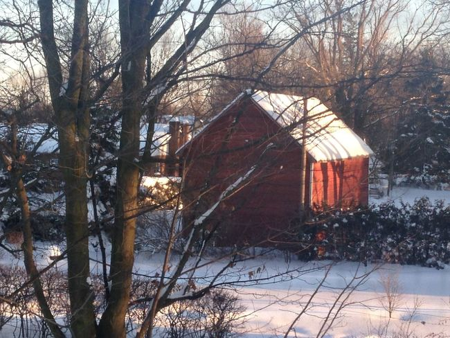 Red barn Cold Temperature Plant Bare Tree Built Structure No People Building Exterior Beauty In Nature Outdoors