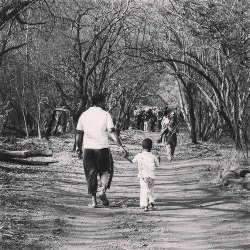 A father walking with his son and telling him fairy tales. Streetphotography Street Blackandwhite Blackandwhitephotography Father Son HIPAcontest Hipacontest_july Instadaily Instagood Tree Walk Instadaily Instagood Puneclickarts Punebytheday Streetphotography Traveller Travellerslife Pictureoftheday Picoftheday Instadaily Instagood Tree Framing