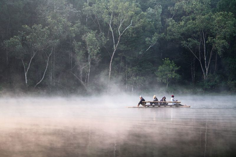 Pang Ung หมอก ปาย แม่ฮ่องสอน Cold ปางอุ๋ง Mist Tree Water Nautical Vessel Plant Nature Fog Men Group Of People Lake People Leisure Activity Beauty In Nature Outdoors Adult Forest Transportation Rowing Sport Oar Rowboat