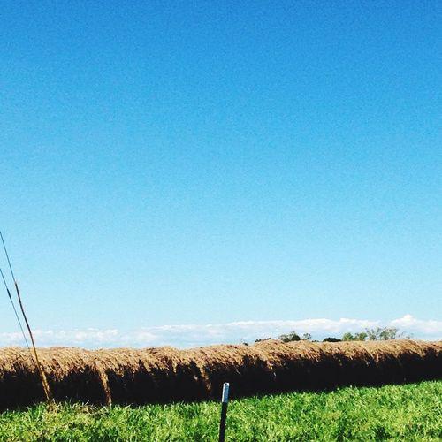 Hanging Out Taking Photos Hay Bales Farming Life Country Life Beautiflesky North Carolina