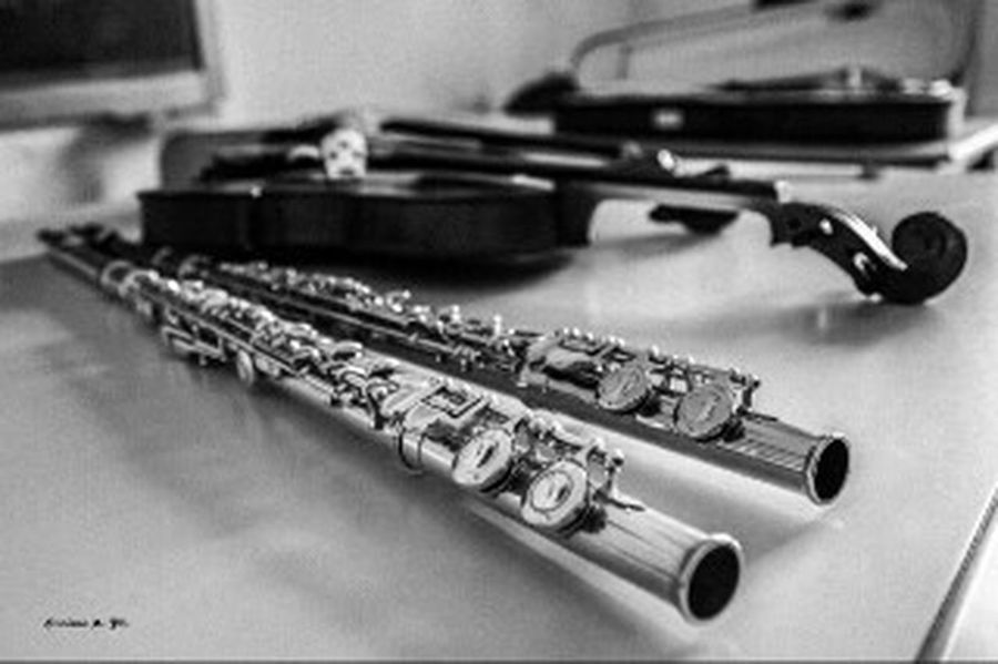 La musica Music Violin Flute Flautatrasversa Flauti Violino Chiavediviolino Violin <3 Violine  Flautas