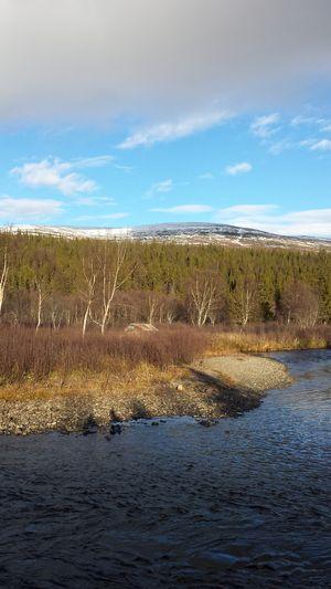 Mountain Snow Water Trees