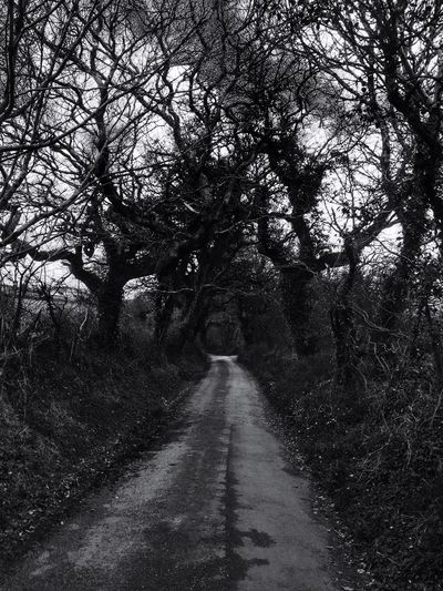 Black And White Blackandwhite Blackandwhitephotography Lanes Country Life Countryroads Escape Nature Countryside Retro Countrywalk
