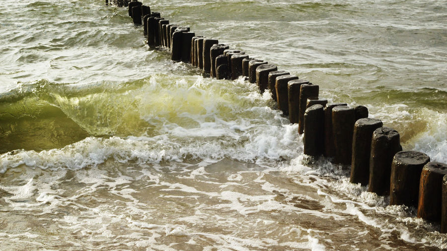 Green Wave -