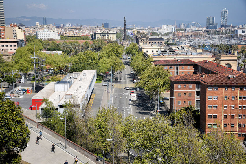 Barcelona cityscape in autumn. Built Structure Building Exterior City Tree Building High Angle View Road Car Cityscape Street Day Outdoors Barcelona Europe Sunny