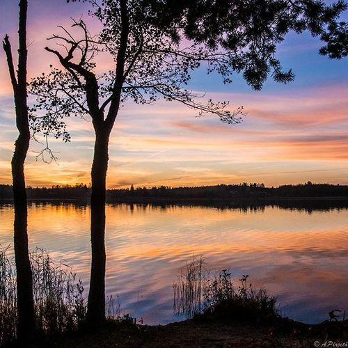 Endless beauty of nature. It's so amazing what we have around us. Fotocatchersmember Ig_finland Main_vision Worldbestgram Finland_bestsunset Excellent_nature Bestcaptureglobal Insta_sky_reflection Ig_myshot Ig_dynamic Loves_skyandsunset Exclusive_water Nature_brilliance 9vaga_skyandviews9 Bestnatureshots Exclusive_reflection Reflecting_perfection My_daily_sun Sky_perfection Photomagicworld Fav_skies Heart_imprint Fotofanatics_sky_ Jj_skylove Global_nature_sunsets fiftyshades_of_twilight ig_week_scandinavia nature_wizards 9vaga_world9 tree_brilliance