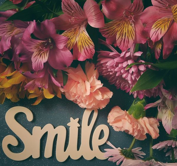Close-up No People Flowers EyeEm Nature Lover Petal Flower Head Fragility Flower Up Close Tranquility Smile Boquet Of Flowers