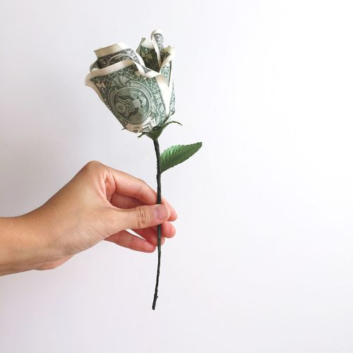 Banking Fund Lending Single Cash Funds Funding Green Selected Handpicked Give Charity Love Loan  Giving Rose - Flower Valentine Valentine's Day  Gifting Gift Dollar Money Budget EyeEm Selects Human Hand White Background Holding Human Body Part Studio Shot Copy Space