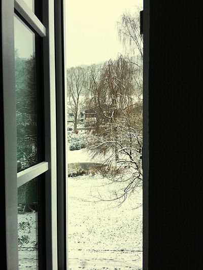 Be. Ready. Window Snow Day No People Winter Indoors  Outlook, Prospect, Panorama, Vista, Scene, Aspect, Perspective, Spectacle, Sight; Scenery, Landscape Romantic❤