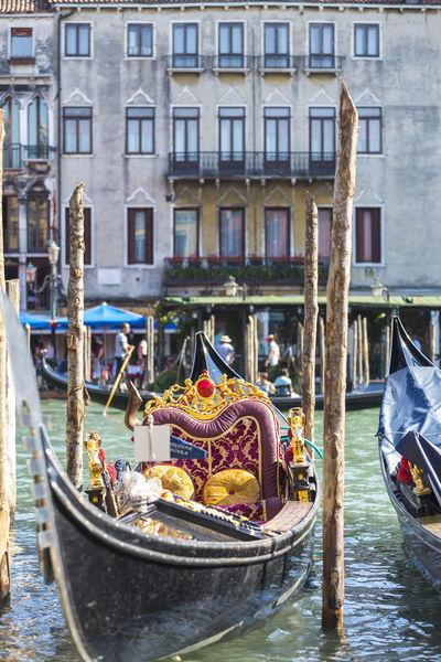 Traditional gondolas in Venice Boat Canal Canale  Canale Grande Detail Europe Gondola Gondolas Gondolier Gondoliere Holiday Italy Rialto Ride Taxi Tour Tourism Traditional Vacation Venedig Venetian Veneto Venezia Venice