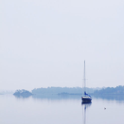 Sailing boat in Swedish waters Awakening Bay Beauty Beauty In Nature Blue Boat Calm Calm Sea Calm Water Fog Foggy Morning Forest Haze Island Meditation Monochrome Morning Quiet Quiet Moments Quiet Places Sailing Boat Tranquil Scene Tranquility Water Yacht