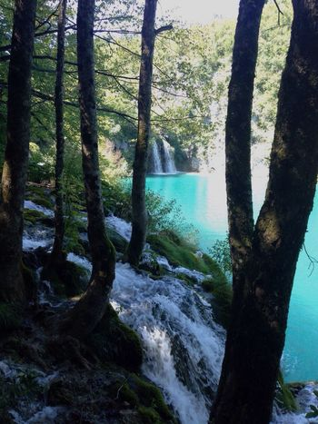 Voyage en Croatie, les lacs de plitvices ! Amazing Amazing Enjoying Life Hello World Check This Out Relaxing Croatia Plitvice National Park Landscape That's Me Holiday Friends Sun Rabac 2015  Istrie