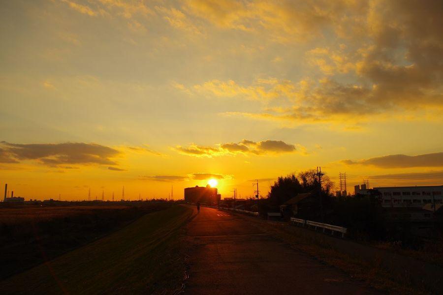 淀川 Sunset