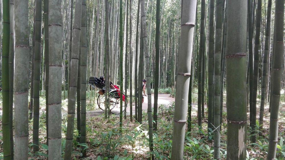 Rickshaw Arishayima Japon UltimateJapan