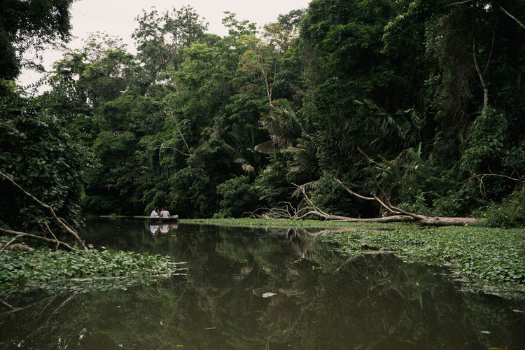 Costa Rica Beauty In Nature Canal Forest Jungle Nature Outdoors Rainforest Tranquil Scene Tree